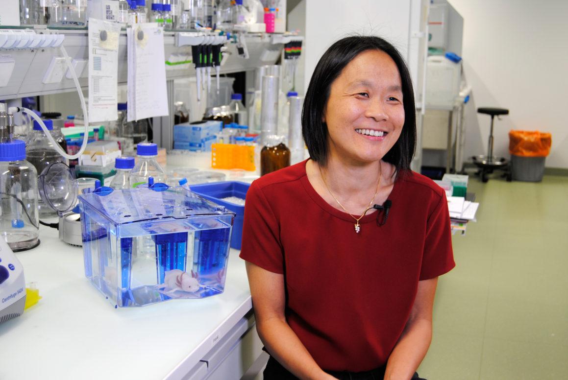 Prof. Elly Tanaka - Ernst Schering Preis 2017