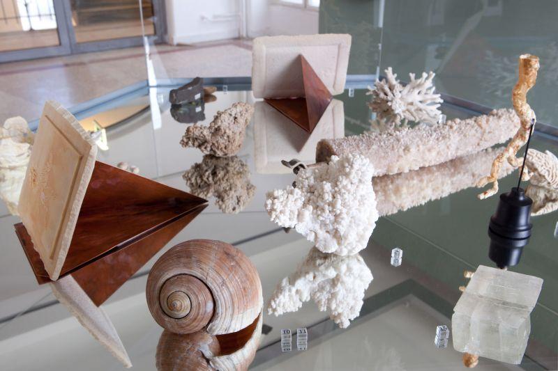 Ausstellungsstücke Steine