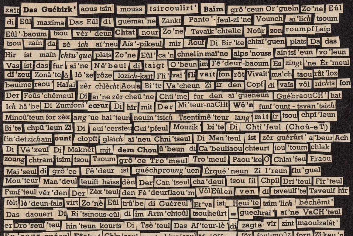 Collage, Dagmara Kraus, aus: das vogelmot schlich mit geknickterschnute