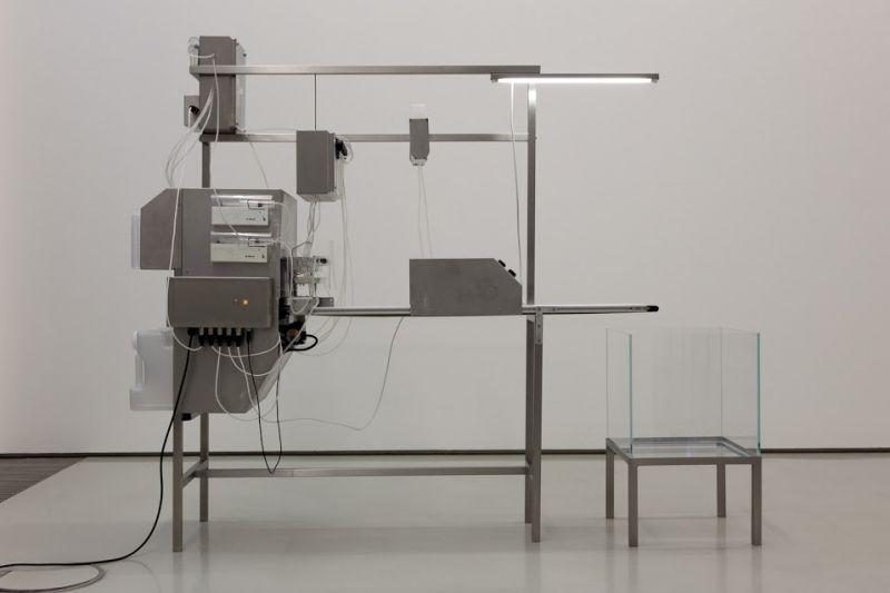 Revital Cohen & Tuur Van Balen:
