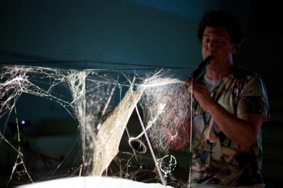 Performance by David Rothenberg with a spider