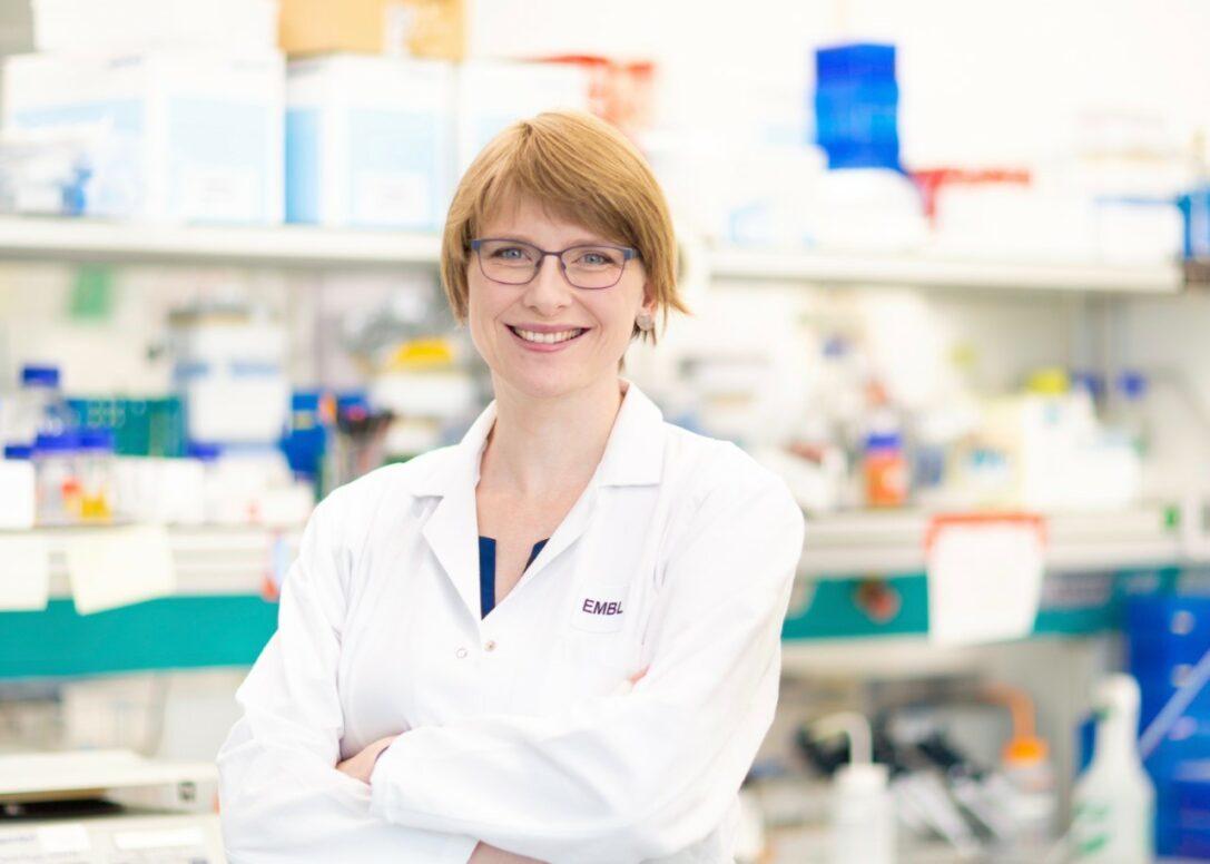 Dr. Andrea Imle